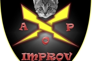 Accidentally on Purpose ~ A Night of Comedy Improv