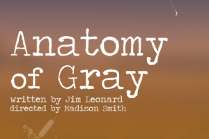 Anatomy of Gray