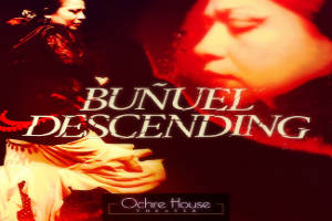 Buñuel Descending