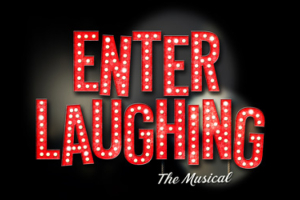 Enter Laughing — The Musical