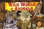 KidFEST: Wild World of Animals