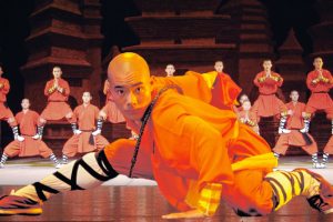 Shaolin Warriors: The Legend Continues
