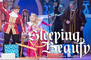 Sleeping Beauty and Her Winter Knight
