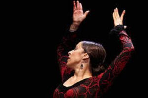 The 2015 New York State Flamenco Certamen