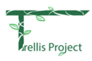 Trellis Project: Incongruence & Juan and Emmett