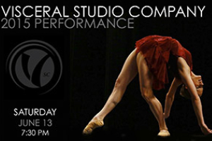 Visceral Studio Company Performance 2015