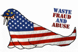 Waste Fraud and Abuse