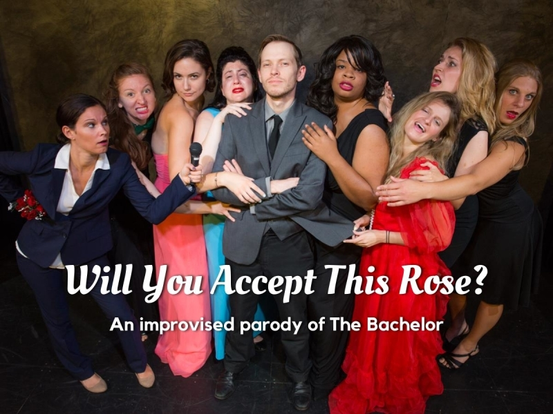 Will You Accept This Rose?, An Improvised Parody of The Bachelor