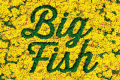 Big Fish Tickets - New York