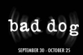 Bad Dog Tickets - Washington, DC