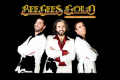Bee Gees Gold Tickets - South Jersey