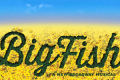 Big Fish Tickets - California