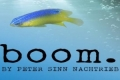 boom Tickets - Chicago