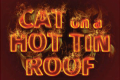 Cat on a Hot Tin Roof Tickets - Berkshires