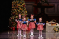 Diane Kelley presents Holiday Spectacular 2017 Tickets - Massachusetts