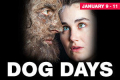 Dog Days Tickets - New York