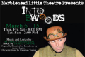 Into The Woods Tickets - Boston