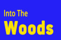Into the Woods Tickets - Washington, DC