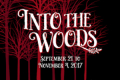Into the Woods Tickets - Illinois