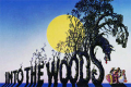 Into the Woods Original Cast Reunion Tickets - New York City