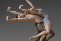 Parsons Dance Tickets - New York City