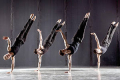 Shaping Sound Dance Company Tickets - Boston