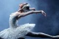 Swan Lake with the Kenwood Symphony Orchestra Tickets - Minneapolis/St. Paul