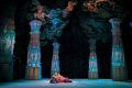 The Pearl Fishers Tickets - Illinois