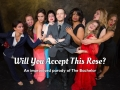 Will You Accept This Rose?, An Improvised Parody of The Bachelor Tickets - Chicago