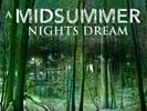 A Midsummer Nights Dream (New World Rep)