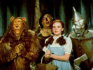 All Singin', All Dancin', All Judy: A Cinematic Celebration of Judy Garland - The Wizard of Oz