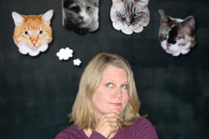 Cat Lady Without A Cat
