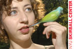 Comedy with Kristen Schaal
