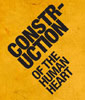 Construction of the Human Heart