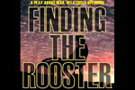 Finding the Rooster