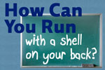 How Can you Run with A Shell on Your Back?