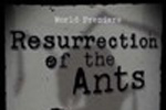 Resurrection of the Ants