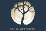 Sycamore Trees