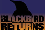 The Black Bird Returns
