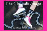 The Chrysalis Stage