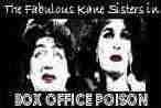 The Fabulous Kane Sisters in Box Office Poison