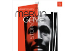 The Marvin Gaye Story