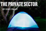 The Private Sector