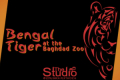 Bengal Tiger at the Baghdad Zoo Tickets - Los Angeles