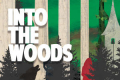 Into the Woods Tickets - Minneapolis/St. Paul