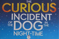 The Curious Incident of the Dog in the Night-Time Tickets - Boston