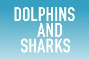 Dolphins and Sharks