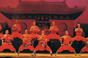 Shaolin Warriors: Return of the Master