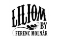 Liliom (Benefit Reading) Tickets - New York City