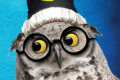 Potted Potter Tickets - Washington, DC